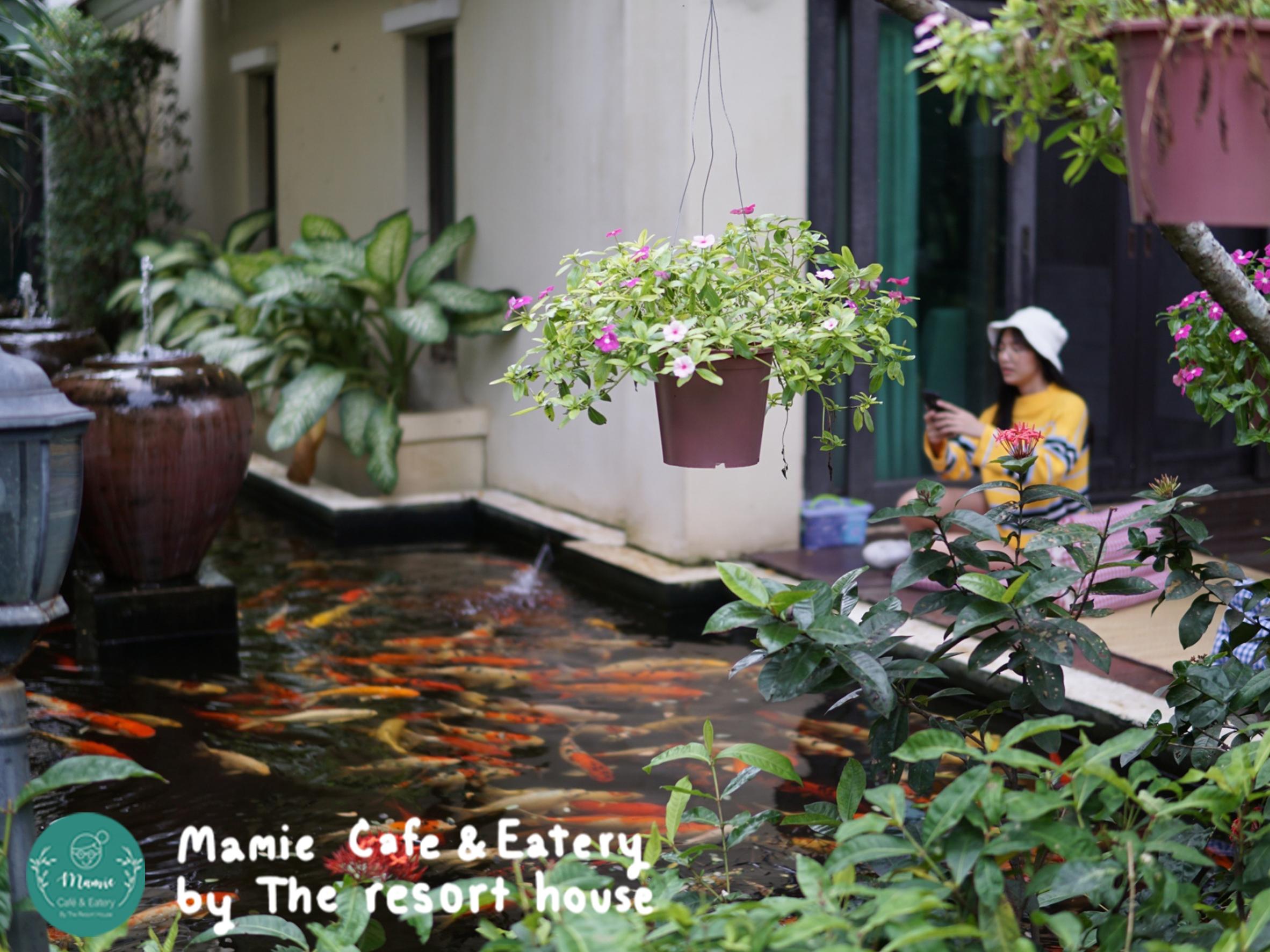 Mamie Café & Eatery