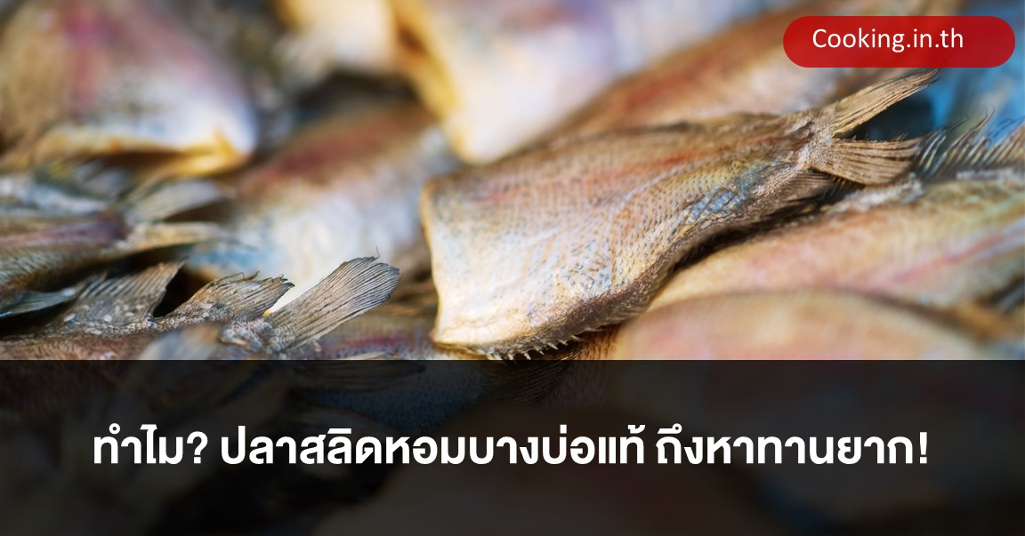 ปลาสลิดหอมบางบ่อแท้