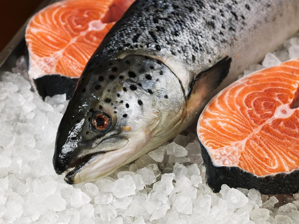 เรื่องที่คุณยังไม่รู้ปลาแซลมอน