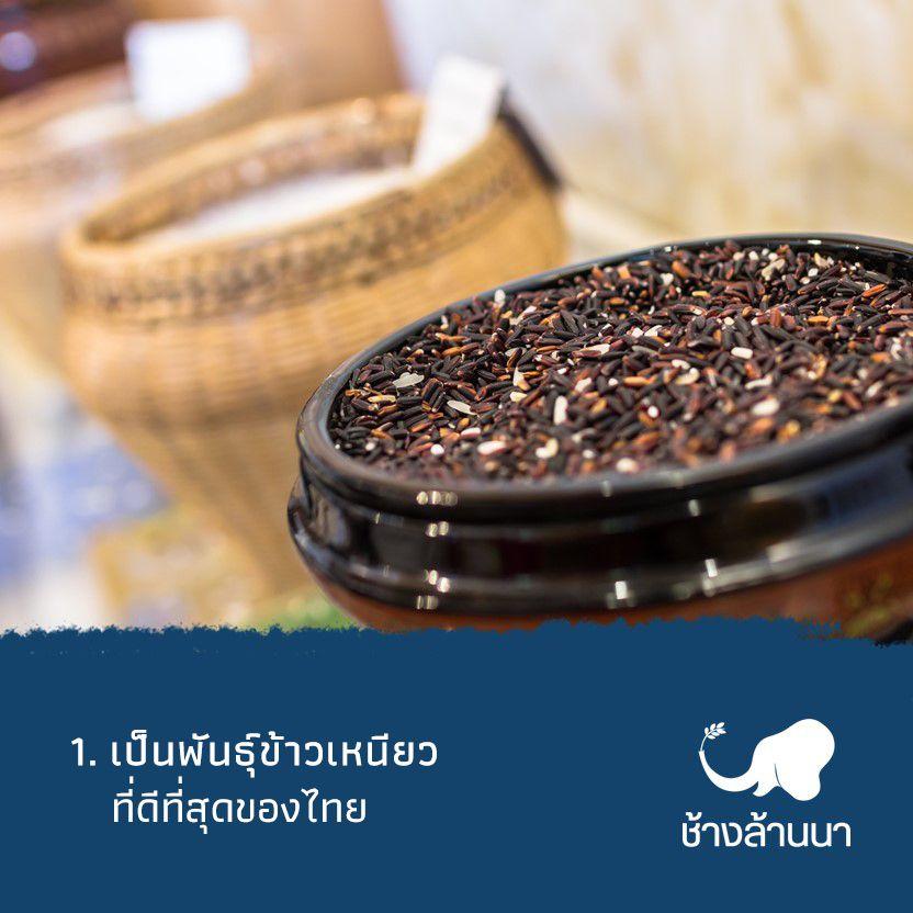 1.ข้าวเหนียวเขี้ยวงู คือข้าวเหนียวที่ดีที่สุดของไทย
